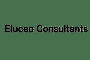 Eluceo consultant